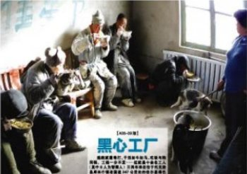 The front page of Xinjiang Metropolis News, showing the derelict conditions of the kidnapped, mentally handicapped slave laborers. (Xinjiang Metropolis News)